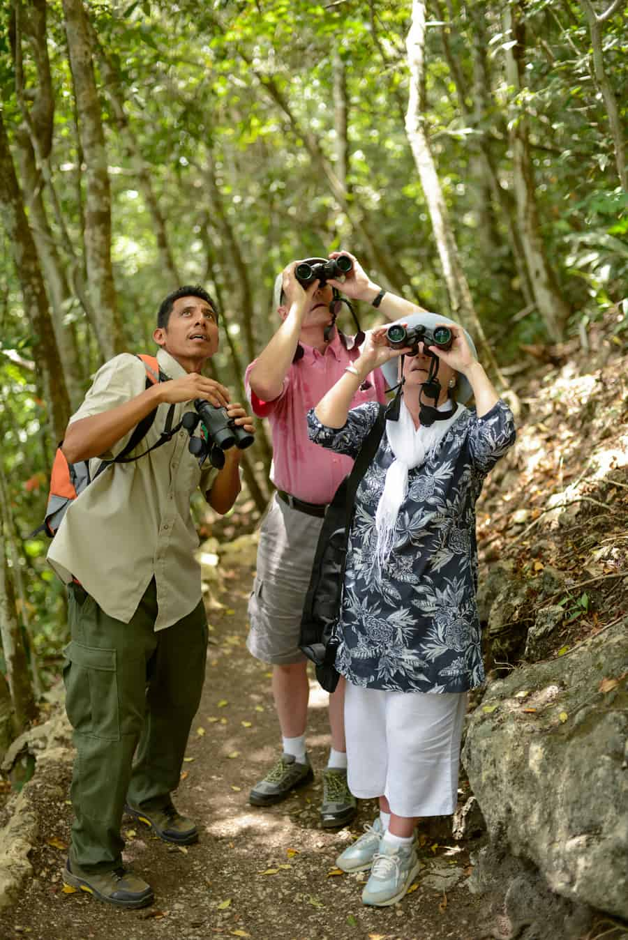 best belize birding tours at Chaa creek lodge
