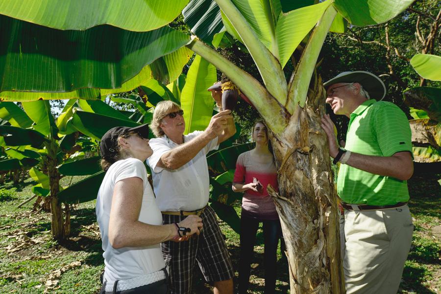 family check out organic Maya farm at Belize Chaa creek