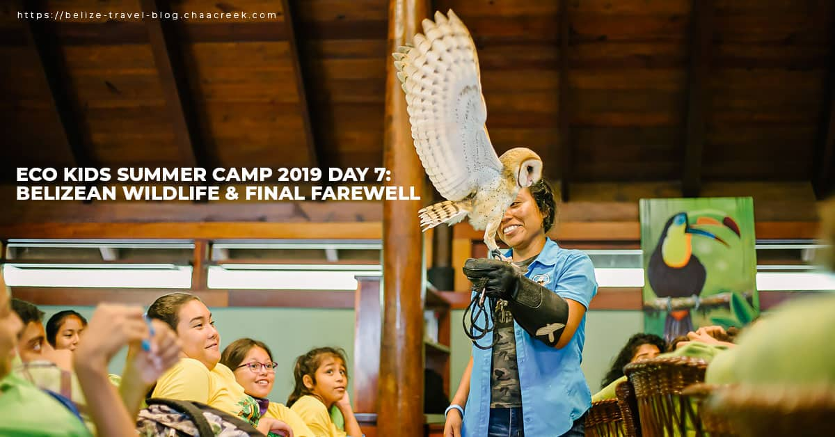 eco kids summer camp 2019 day 7 wildlife farewell hero