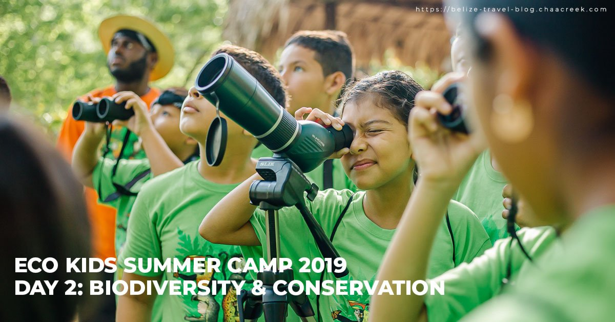 Belize Eco Kids Summer Camp 2019 Day 2 featured