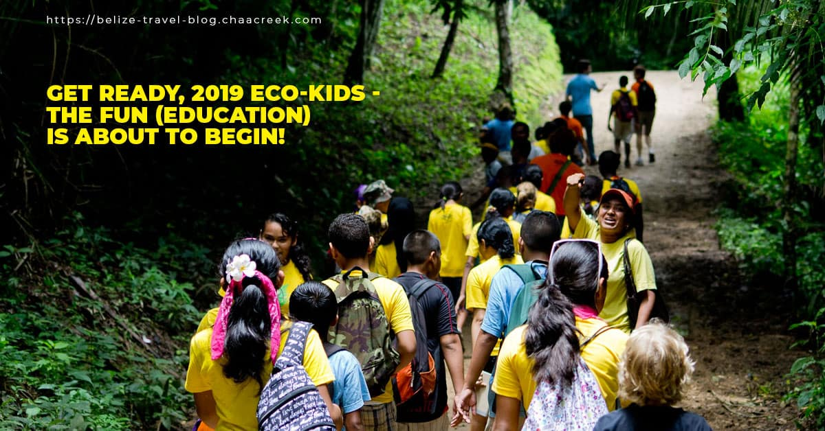Chaa Creek Eco Kids Summer Camp 2019 About to Begin