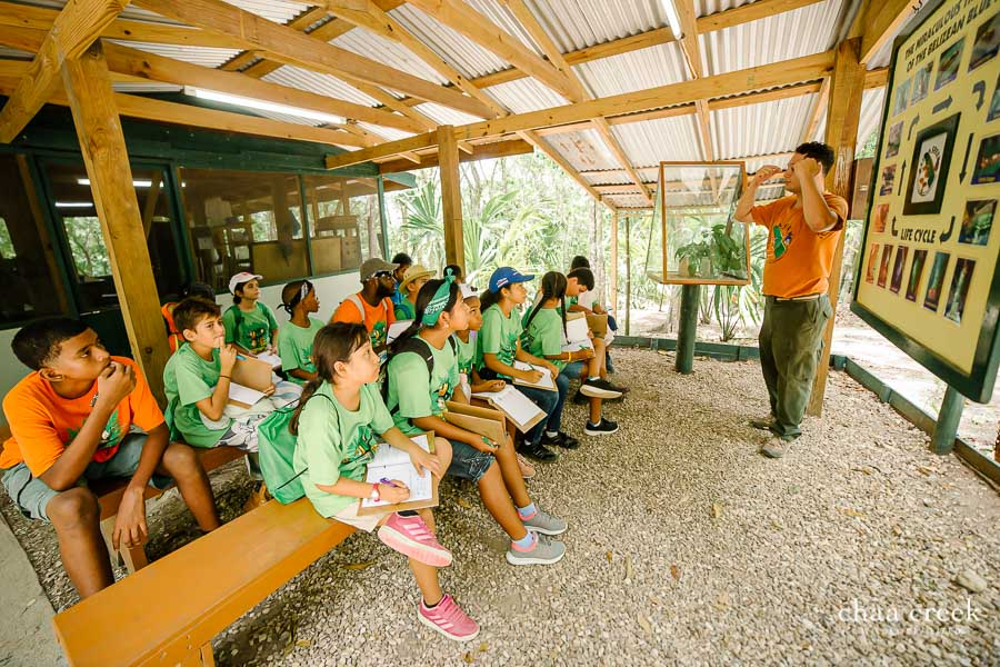 chaa-creek-eco-kids-summer-camp-day-2-22