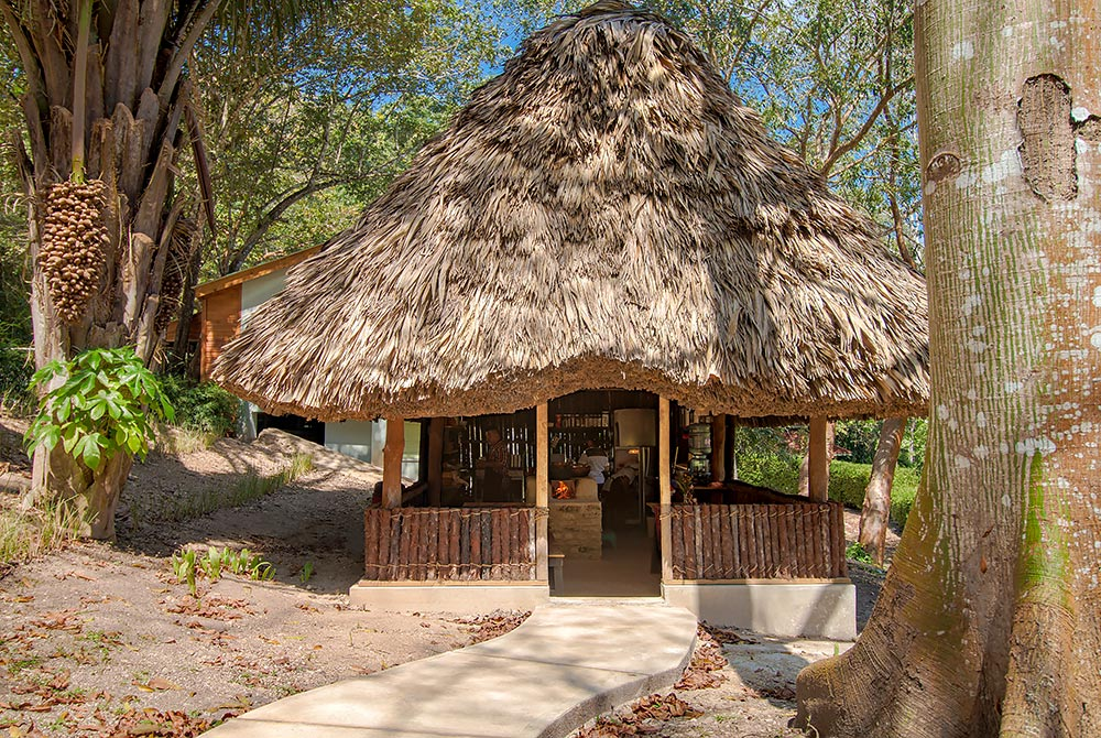 chaa creek open hearth belize cooking class palapa exterior