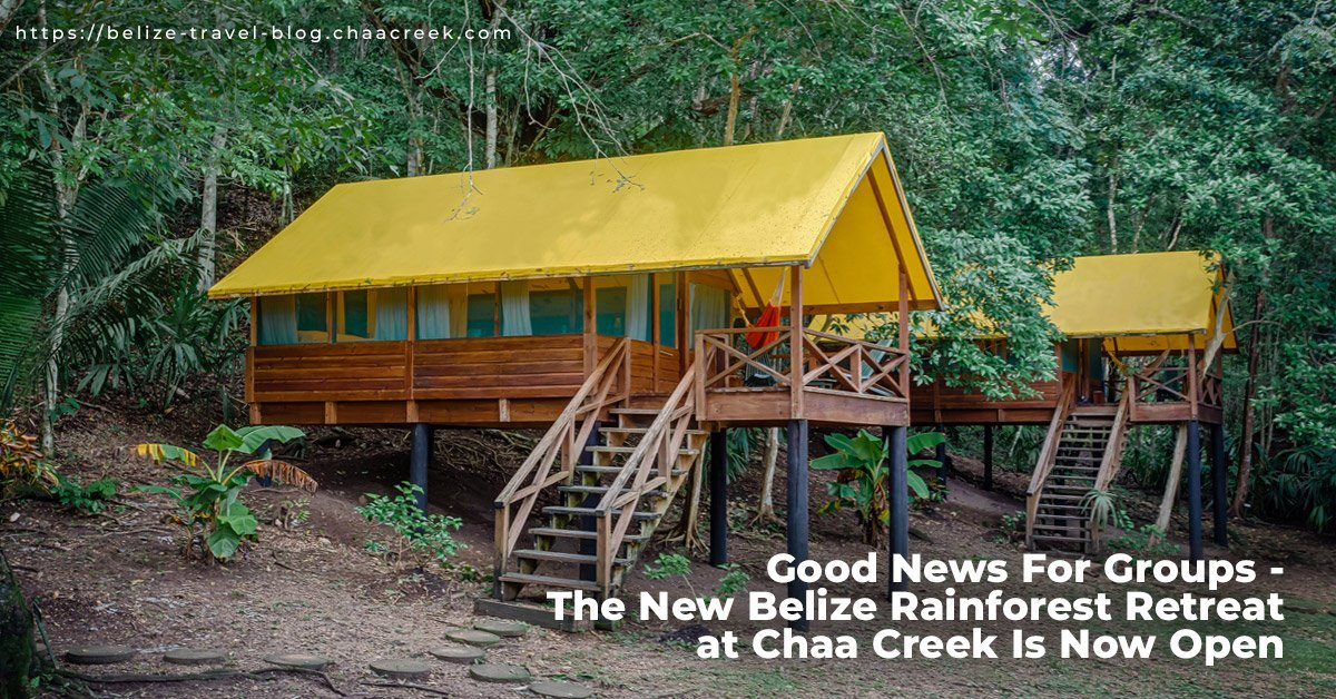 belize rainforest retreat at chaa creek now open header photo
